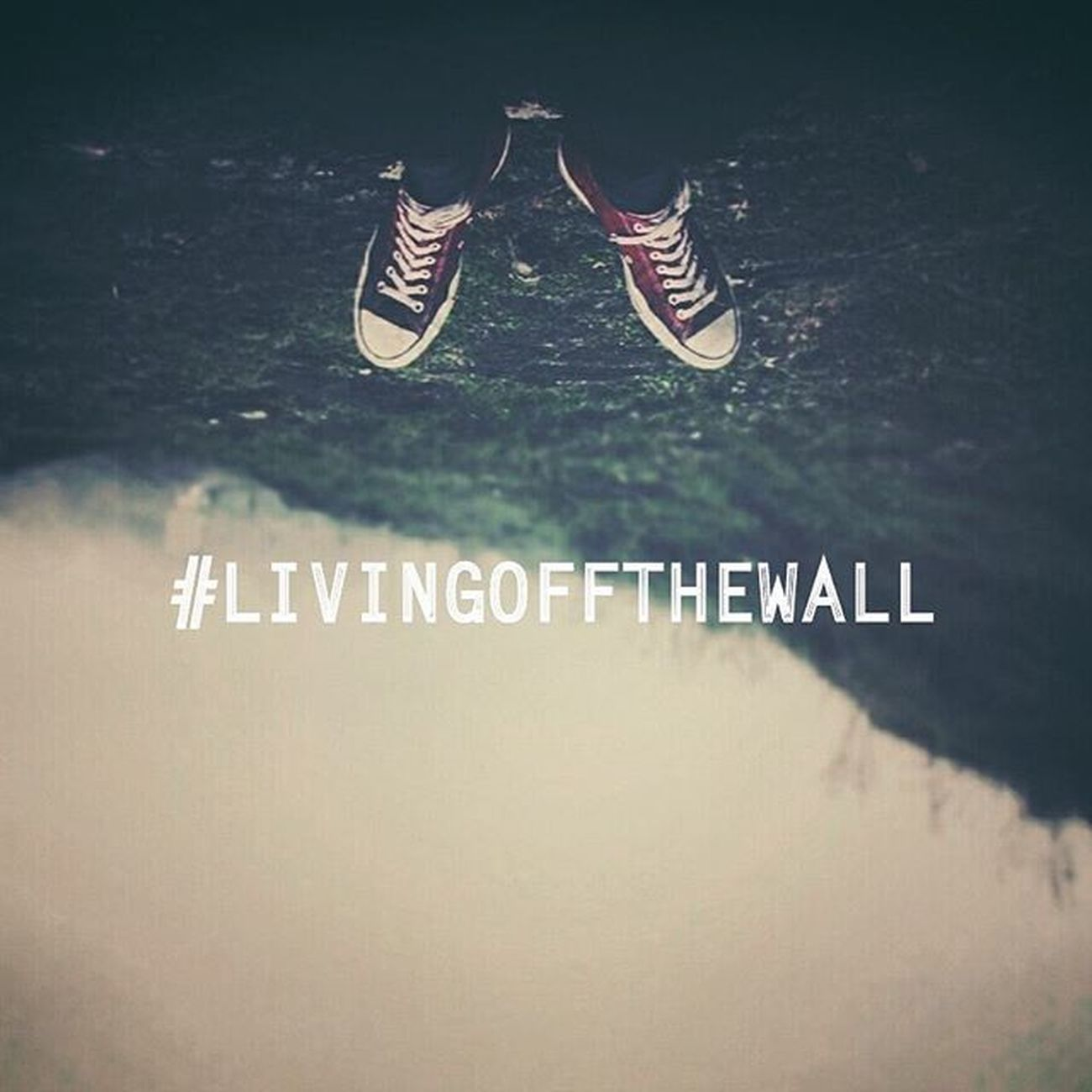 Off the wall™ Vagamon Dcsmat Luminance 2K15 RideOrDie Fun Kurishumala Livingoffthewall 1966culture Notvans Converse Chillypaste Lub Prayers Frnds Insta InstaFreeks Instadaily Hastag  Peace Instadaily Picoftheday Followmefollowyou ∆_∆