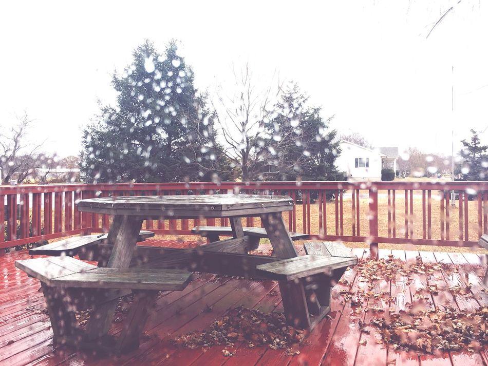 Lovely rainy Autumn day Wood - Material No People Outdoors Nature Rain Rainy Days Rainy Day Rain Drops Rainy Season Autumn Autumnrain