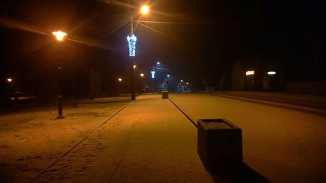 Zima Park Sosnie Nowyrok