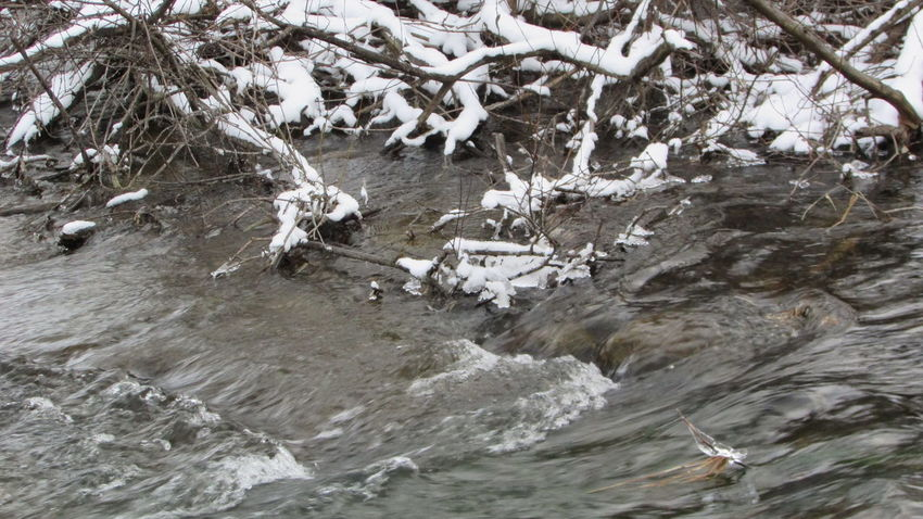 Beauty In Nature Clam River Winter Landscape Rushing Water Serene No People Cadillac Pure Michigan