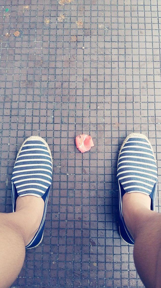 Shoes Stripes Pattern Flower Loafers Sad