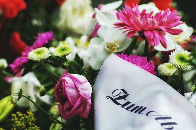 Farewell Last Goodbye Graveyard Funeral Cemetery