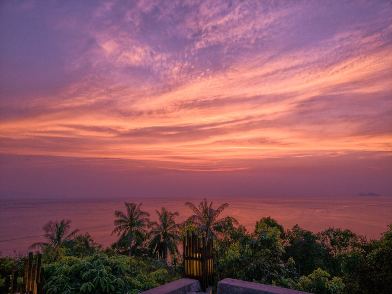 sea, sunset, scenics, beauty in nature, nature, tranquil scene, horizon over water, sky, water, tranquility, tree, palm tree, beach, idyllic, no people, outdoors, growth, cloud - sky, day