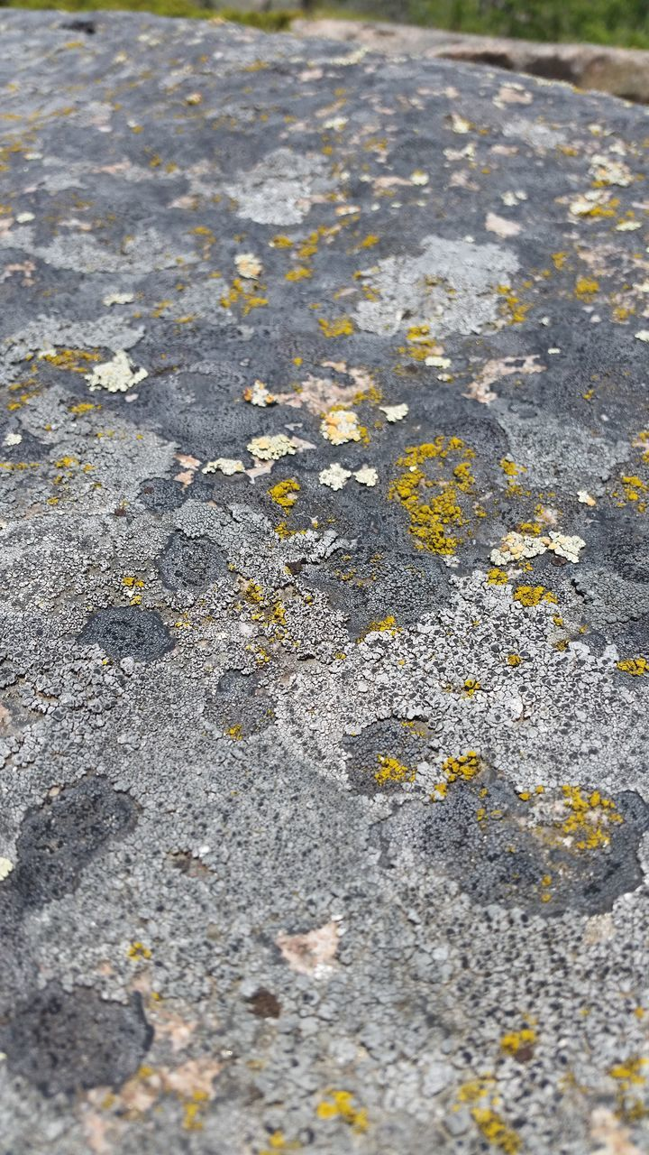 textured, no people, outdoors, full frame, day, backgrounds, close-up, stone tile, road, nature