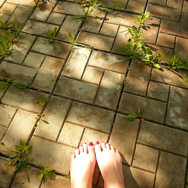 лето 2016 весна настроение тепло солнце Sun Summer Life Smile First Eyeem Photo