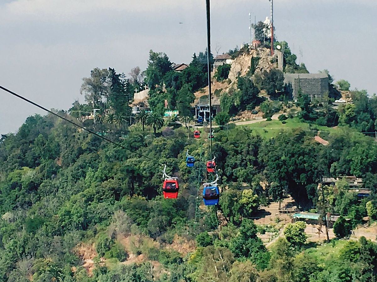 Tree Mode Of Transport Transportation Land Vehicle Sky Nature Outdoors Patriotism Day Nature Green Color Overhead Cable Car Architecture Mountain No People