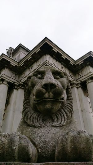 Looking at you Sculpture Statue Close-up Lion - Feline Lion Statue Stone Lion Casino Sculpture In The City Lion Sculpture Architecture Classic Neoclassical Architecture Dublin Dublin, Ireland Marino, Dublin No People Outdoors Human Representation Gray Day... Bnw_of_our_world Bnw_snapshots Bnw_city