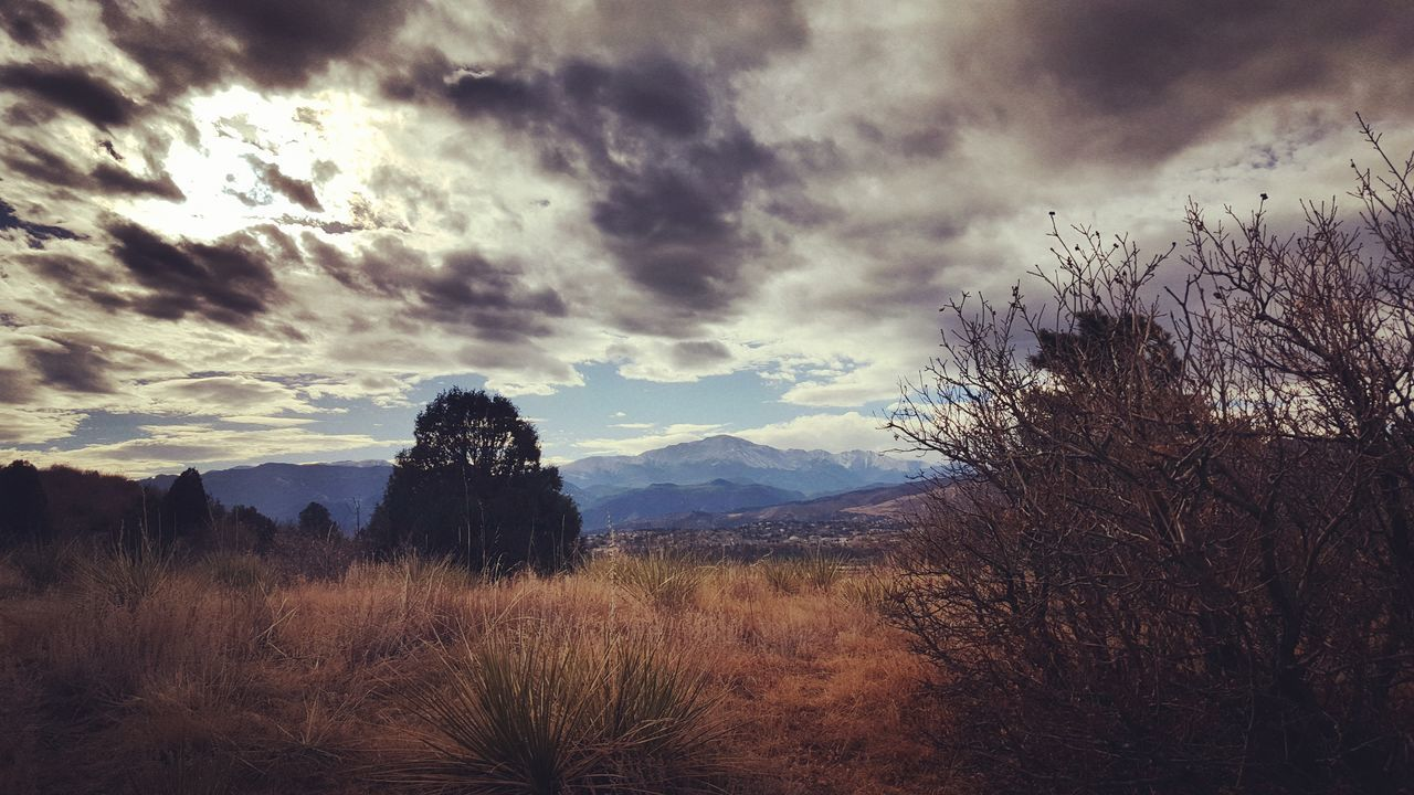 Colorado Nature Sky Cloud - Sky Tree Beauty In Nature No People Tranquility Storm Cloud Mountain Landscape Scenics Outdoors Dramatic Sky Outdoorphotography Exploremore Getoutside Wanderlust Viewcolorado Outdoorlife Hiking Hikerslife Pikes Peak Rocky Mountains Explore