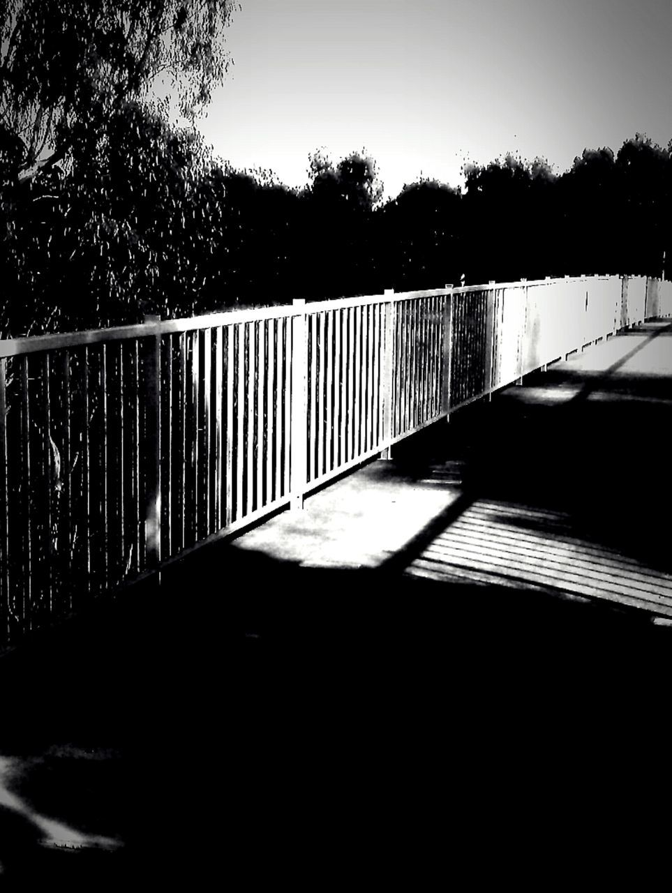 Railing with silhouette trees in background