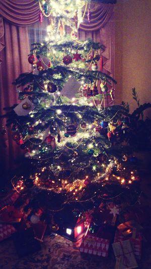 Christmas Tree Christmas Merry Christmas! Enjoying Life