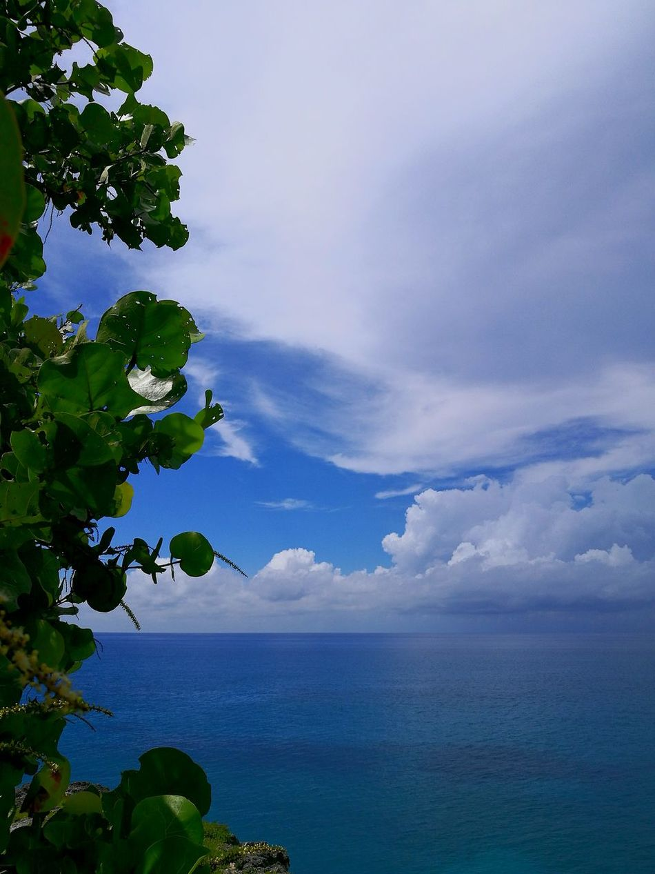 Sea Horizon Over Water Scenics Tree Tranquil Scene Tranquility Beauty In Nature Sky Seascape Blue Cloud - Sky Water Nature Caribbean Caribbean Blue Caribbean Island Caribbeanpics Tourism Nature Calm Beauty In Nature Tranquility Ocean Tree Cloud