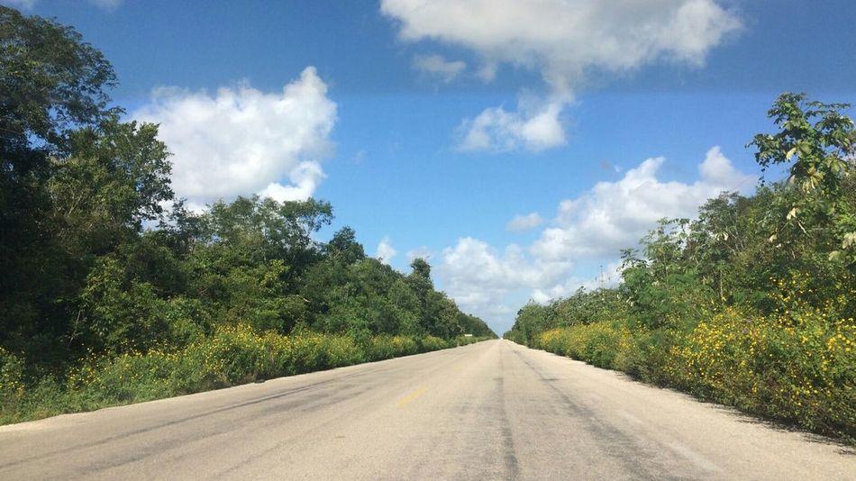 Roadtrip Road Tree Cloud - Sky Landscape Sky Day Nature No People The Way Forward Blue Outdoors Jungle Mexico Yucatán, México Paisajes Naturales Panoramic Landscape Nature Scenics Beauty In Nature