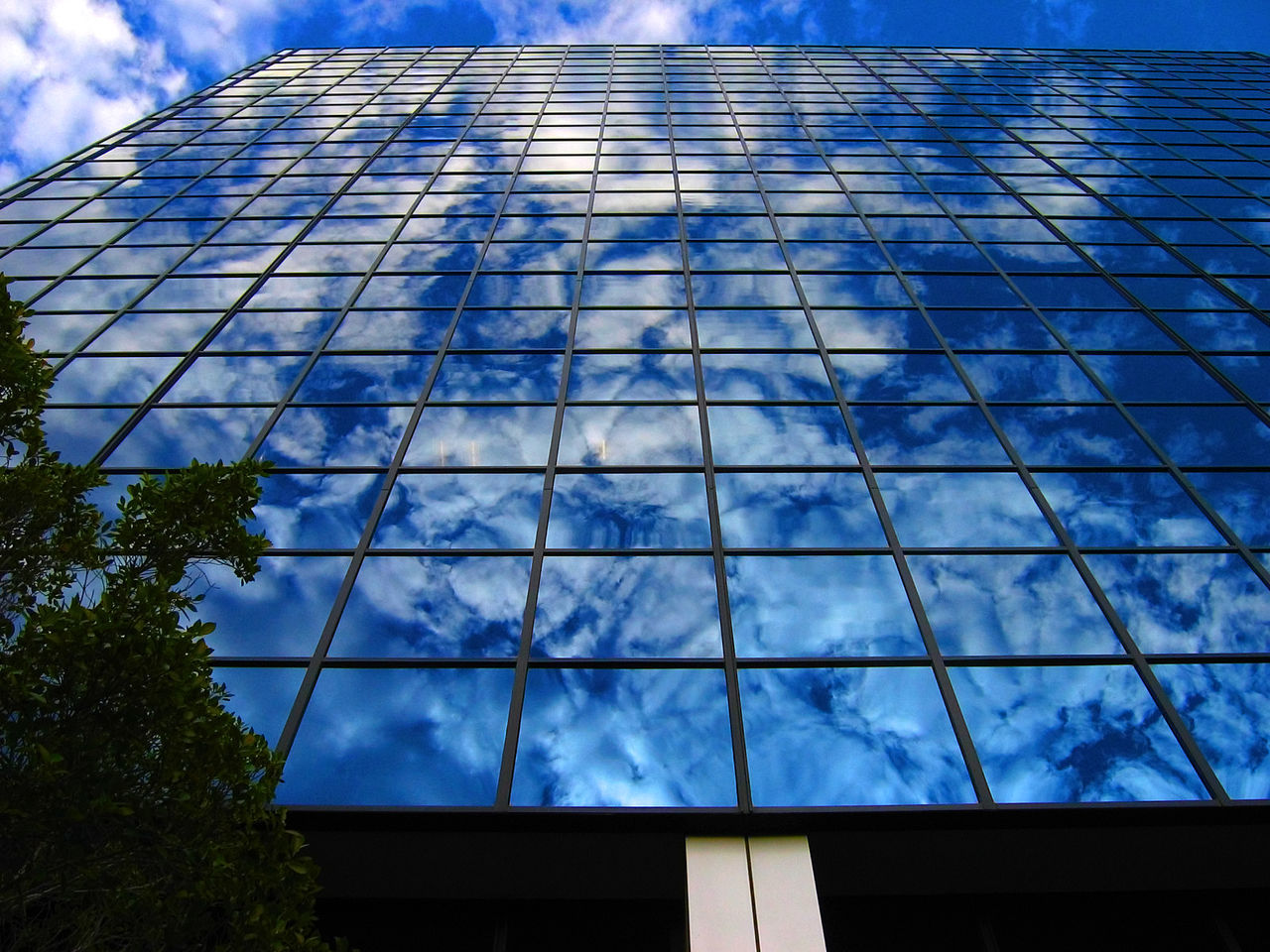 Architecture Blue Building Exterior Built Structure City Cloud - Sky Day Growth Low Angle View Modern Nature No People Outdoors Sky Skyscraper Tree