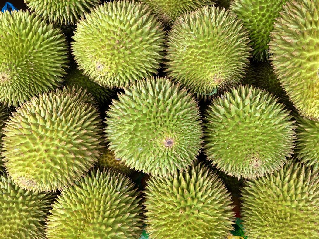 Durians, the king of fruits, are displayed for sale at a stall in Zamboanga City in southern Philippines. Durian Durian Fruit Durians Shop Zamboanga Philippines Fruits Fruit Photography Spikes King Of Fruits Durio Zibethinus Spiky Fruits Beautifully Organized Adapted To The City