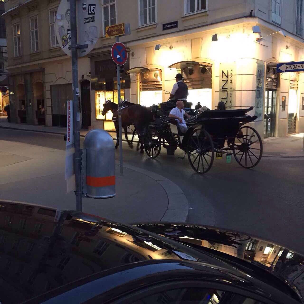 Horses Horses Platz Architecture Buildings Street View Street Photography Sity View Street Carriage People Attraction