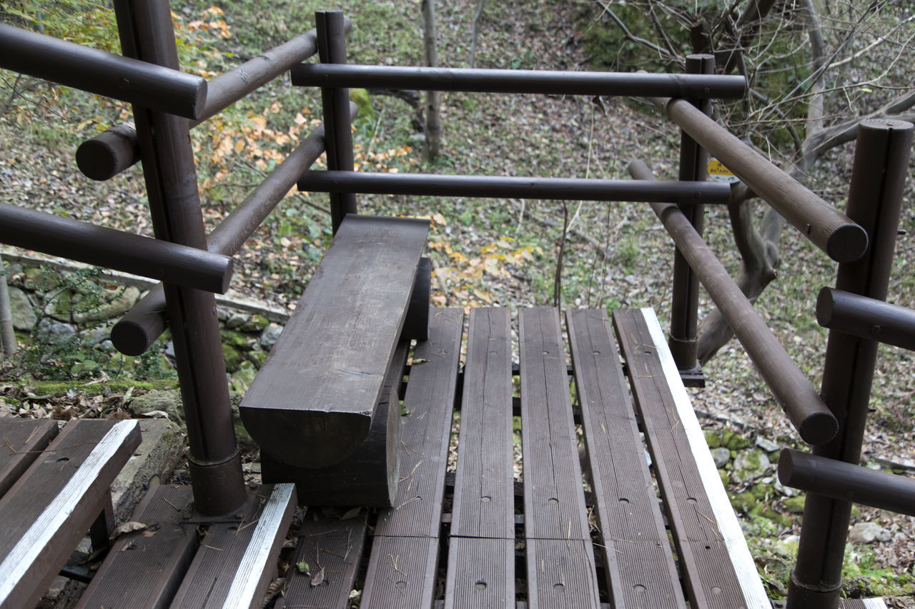 autumn in Maisan Mountain, Muan, Jeonbuk, South Korea Autumn🍁🍁🍁 Bench Close-up Day Fall Forest Hand Rail Maisan Metal Mountain Nature No People Outdoors Park - Man Made Space Railing Steps Steps And Staircases Tranquility Tree