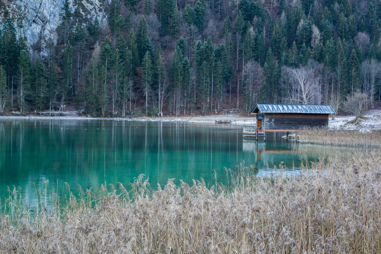 Hintersteiner See Water Nature Reflection Tree Hintersteinersee Österreich Holiday Vacation Scheffau Austria Snow Skiing Green Greenwater Growth Tranquility Beauty In Nature Tranquil Scene No People Scenics Outdoors Day First Eyeem Photo