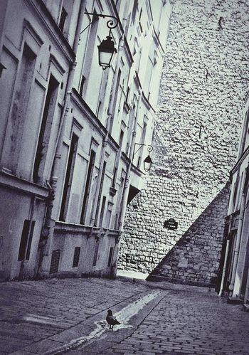 Built Structure Architecture Building Exterior No People Day Outdoors Paris, France  Paris, France  Paris Architecture City Travel
