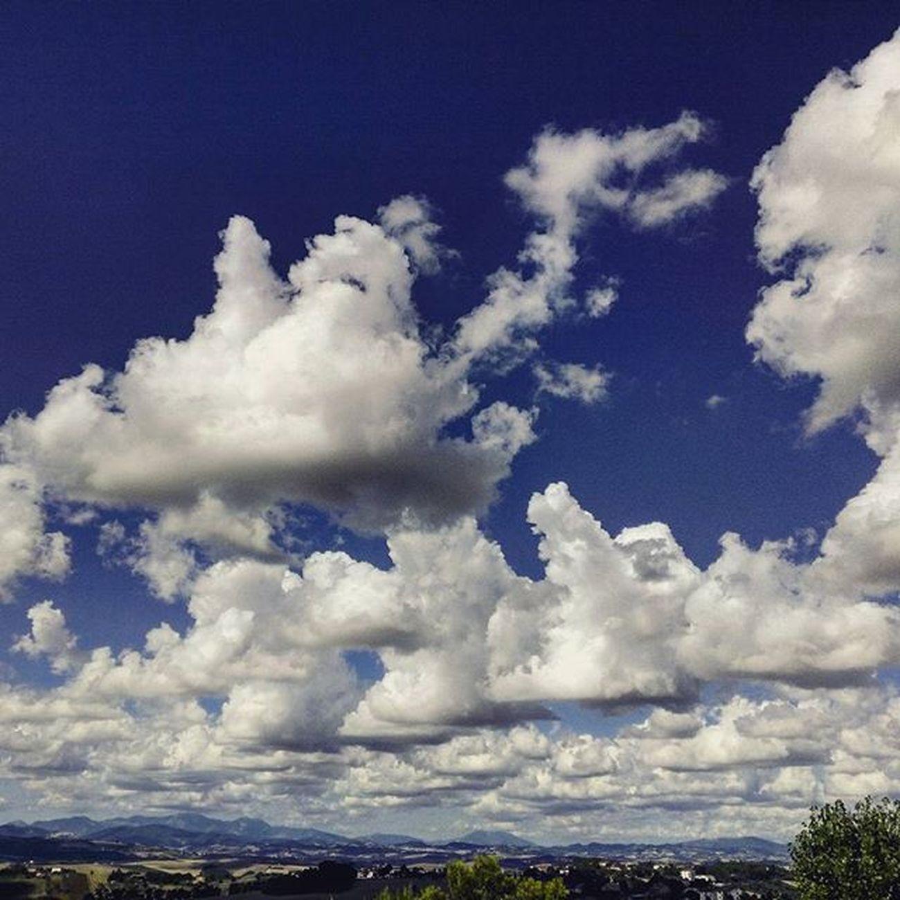 flock of clouds . Nuvole Clouds Cloudscape Cloudslovers Sky SkyClouds Skylovers Cieloazzurro Cielo Blu Bluesky Marche Marcheforyou Italy Italia Liveloveitalia Whatitalyis Landscape Flock