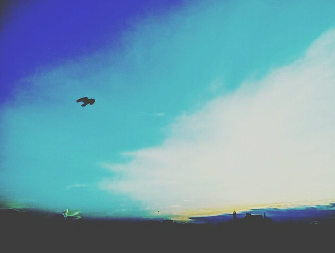 Open skies Beauty In Nature Solo Fly