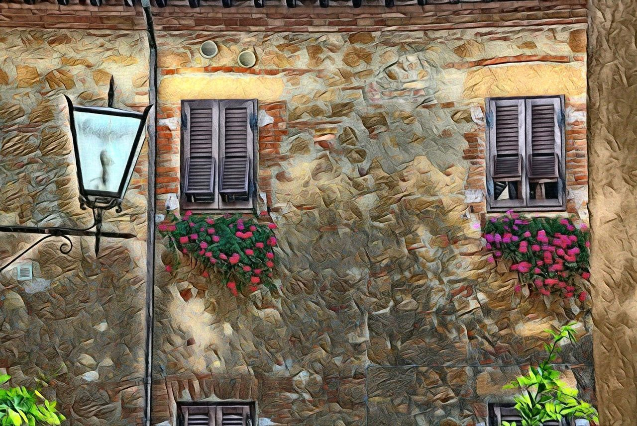 window, door, architecture, no people, built structure, building exterior, outdoors, day, rustic, flower, window box, close-up