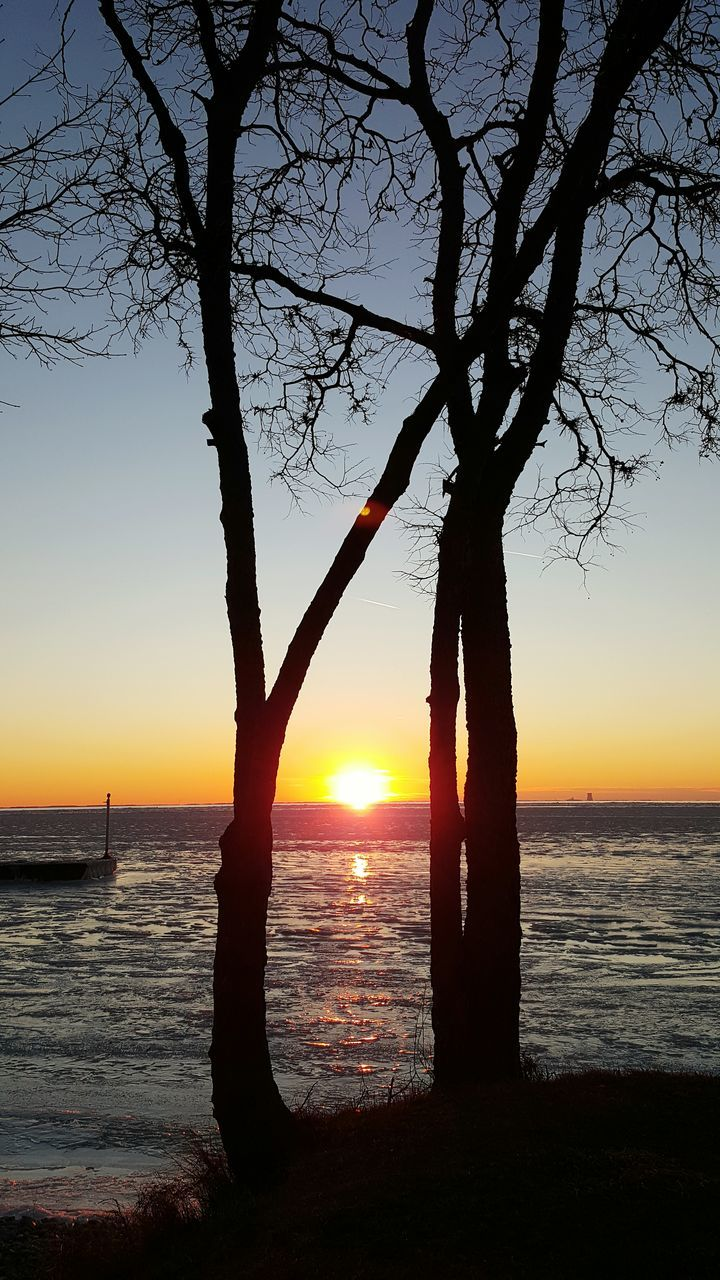 sunset, sea, sun, beauty in nature, scenics, orange color, water, silhouette, tranquility, nature, tranquil scene, sky, horizon over water, sunlight, no people, tree, bare tree, outdoors, branch, beach, day