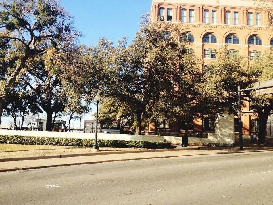 Dallas Tx John F. Kennedy  History Travel Photography EyeEm Instaphoto Moments ILikeThisPic Surprise Wonderful Day