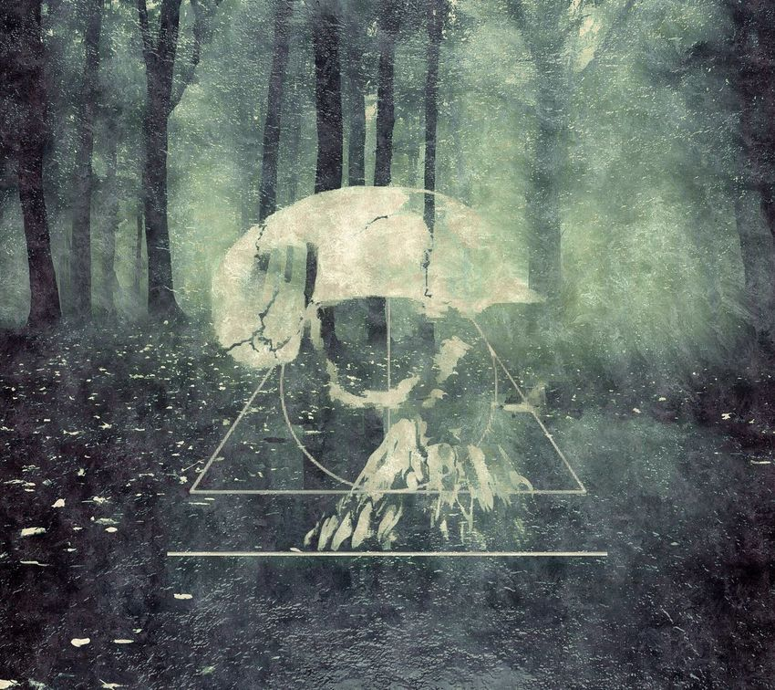 """My latest piece """"Grovel"""" Nature Woods Album Artwork Band Eerie Beautiful Forest Photoshop Graphic Graphic Design Graphics Skull Triangle For Sale"""