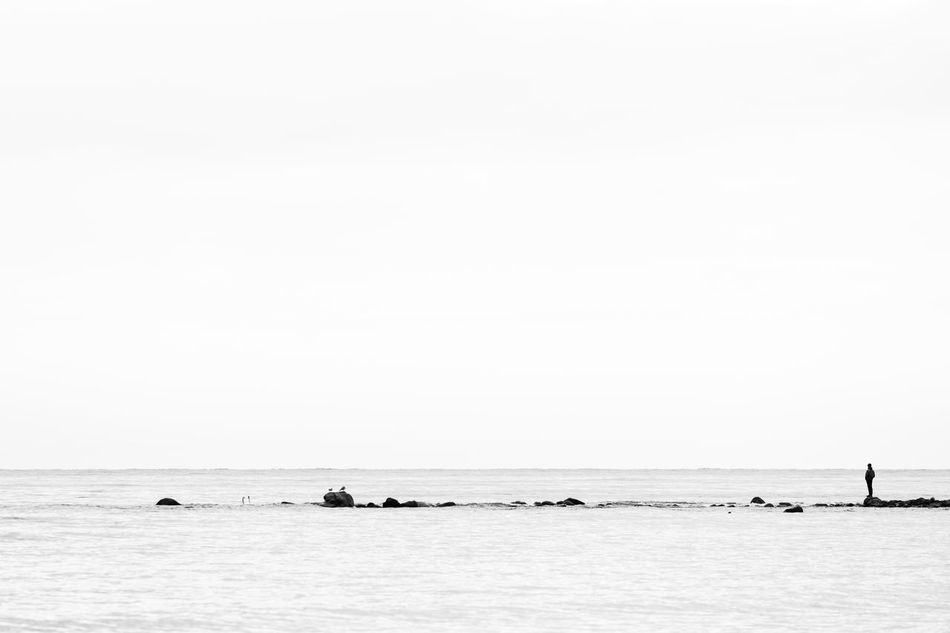 Young man standing on a rock looking towards sea Baltic Sea Beauty In Nature Black And White Copy Space Distant Getting Away From It All Horizon Horizon Over Water Incidental People Loneliness Looking Away Nature One Man Only Outdoors Overcast Relaxation Rock - Object Scenics Sea Simplicity Sky Tranquility Water Waterfront Wave