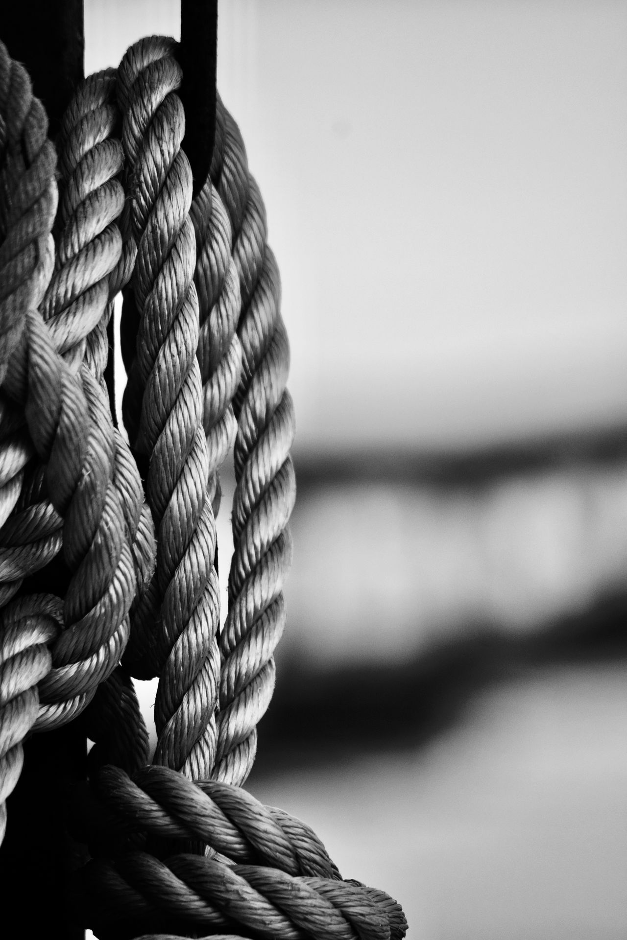 Blackandwhite Close-up Day Nature Nautical Vessel Nikon Nikonphotography No People Outdoors Pulley Reflection Roap Sea Water