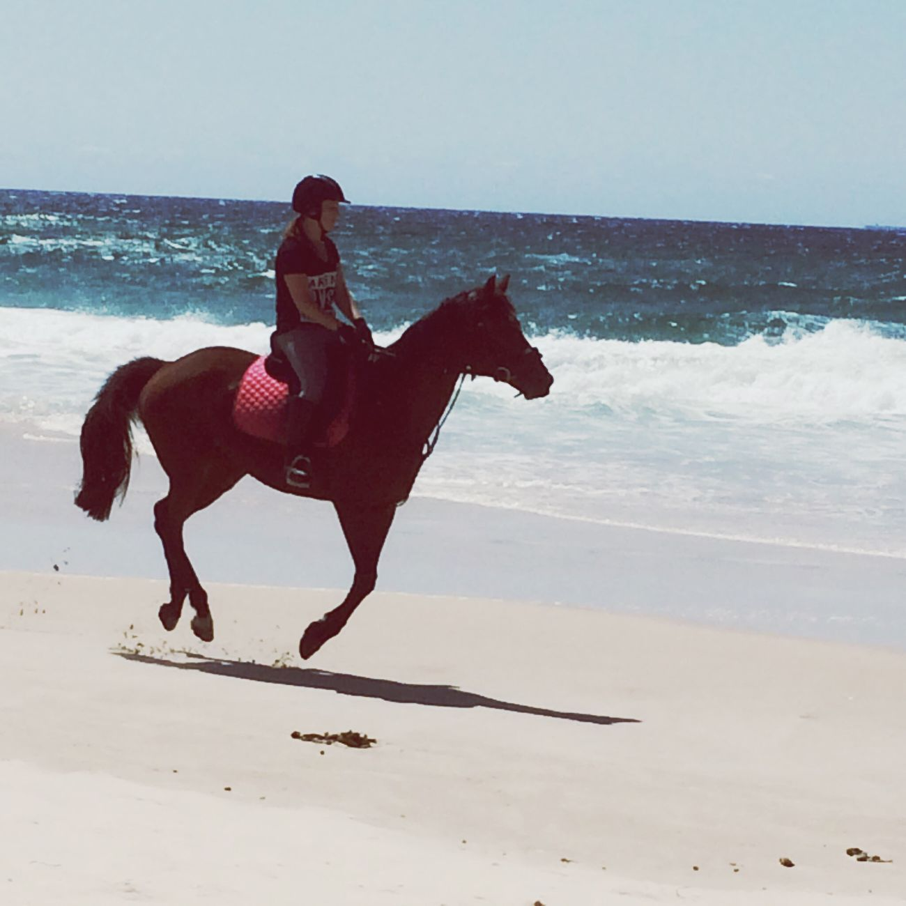 That's Me Enjoying Life Horses Beach
