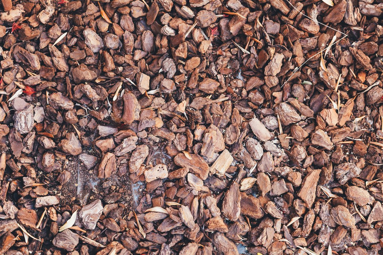 Full Frame Abundance Backgrounds Lumber Industry Large Group Of Objects Nature Deforestation No People Day Fuel And Power Generation Outdoors Food Close-up Freshness Pattern Textured  Texture Wood - Material Wood Crust Bark Texture Bark Rind Background Background Texture