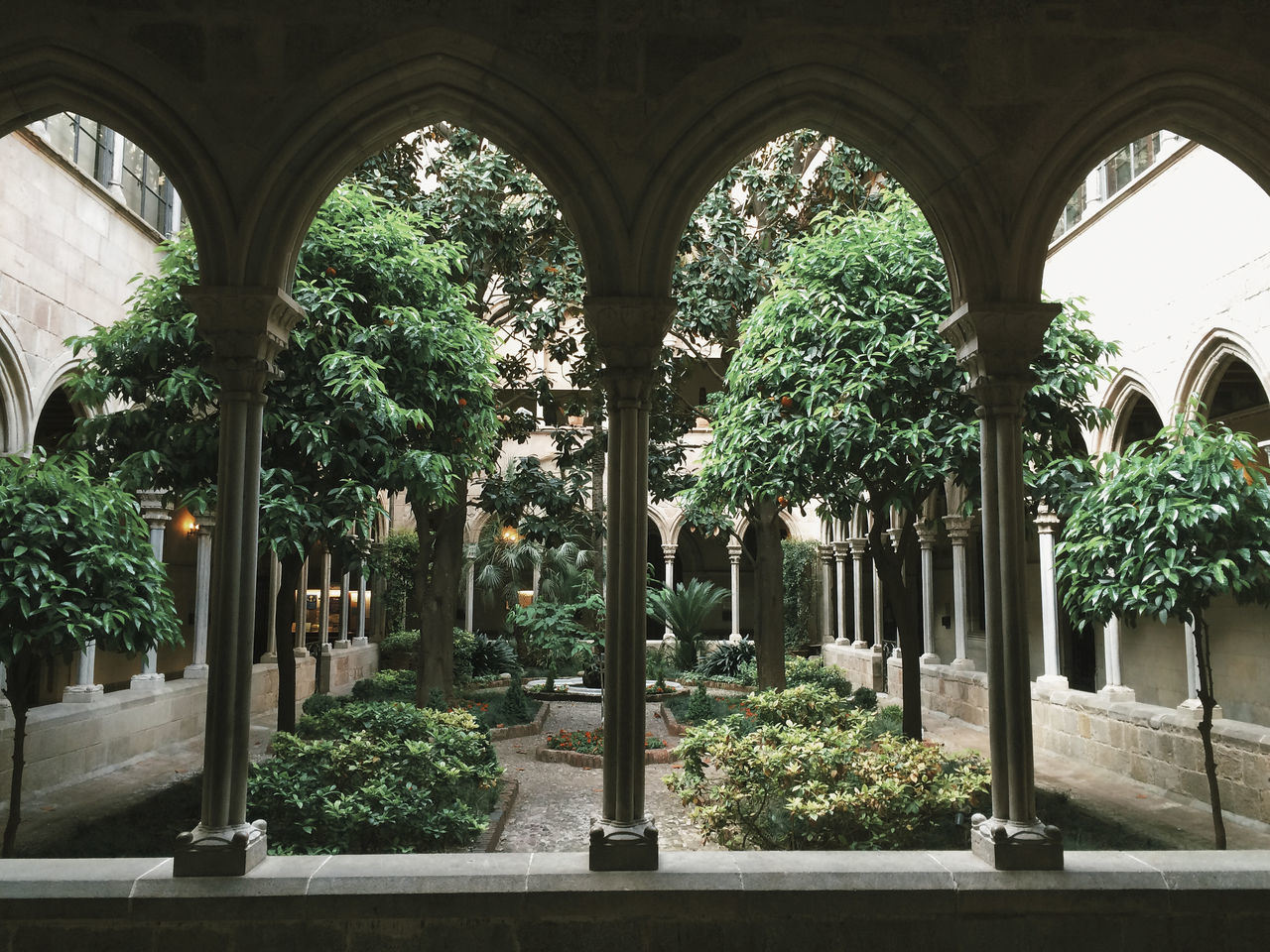 Arch Architectural Column Architecture Built Structure Calm Church Cloister Day Growth Mediterranean  Nature No People Outdoors Plant Spirituality Tree