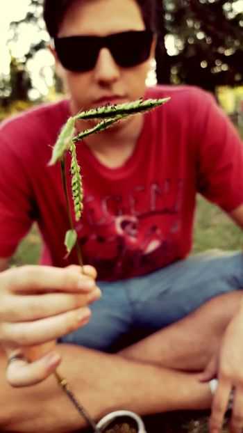 Sitting Casual Clothing Outdoors One Person Day Close-up One Man Only Nature Cesped Oclusion