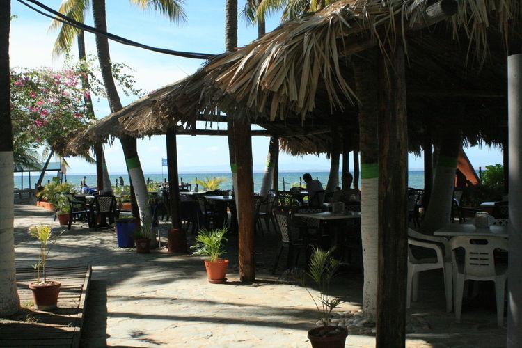 Cafe Caffee Carribean Good Morning Margarita Island Margarita, Venezuela Tourist Resort Travel Tropical Playa El Yaque