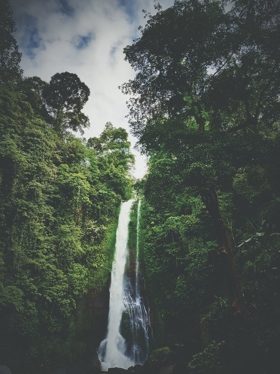 tree, waterfall, motion, nature, beauty in nature, water, scenics, green color, growth, low angle view, long exposure, no people, forest, outdoors, day, lush foliage, tranquil scene, tranquility, travel destinations, sky, plant, vacations, spraying, freshness