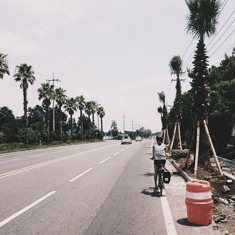 Traveling Travel Bicycle Dahon Trip Korea