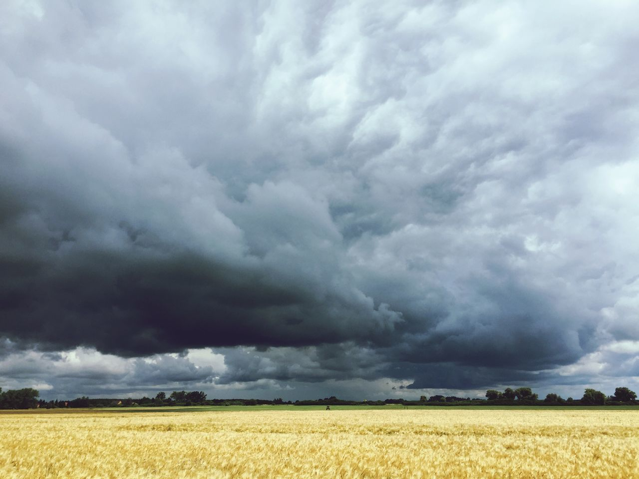 Beautiful stock photos of storm, Agriculture, Beauty In Nature, Cloud - Sky, Day