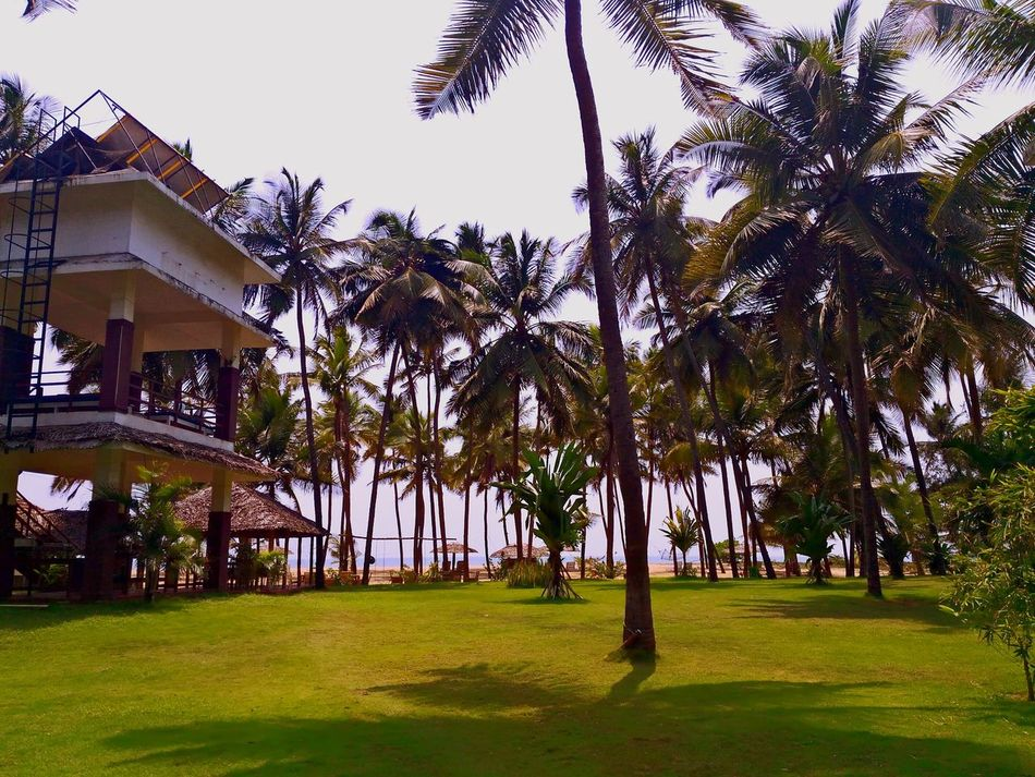 Luxury Tourism Cottage Comfort Vacation Resort Beach Architecture Day Grass Outdoors No People Growth Sky Nature Beauty In Nature India Time Tree Scenics Nature_collection Leaves Leaf Green Color Beauty In Nature