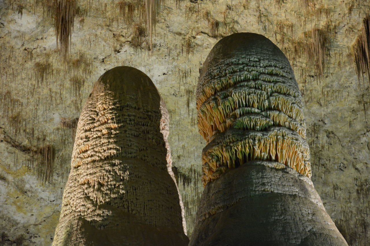 Big stalagmites Carlsbad CarlsbadCaverns Cave Caves EyeEm Gallery EyeEm Nature Lover First Eyeem Photo Flowstone Cave Hello World Höhle Indoors  Limestone Nature Pair Rock Rock Formation Stalactite  Stalagmites Strange Travel Destinations Tropfsteinhöhle United States USA