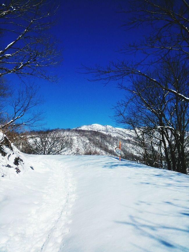 Snow Mountain Sky Snowtrail Holiday