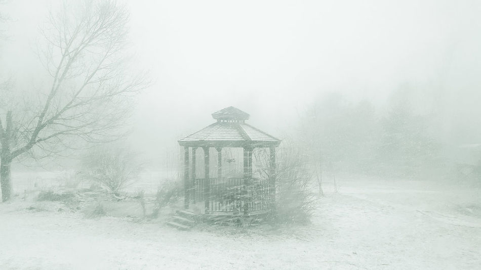 Winter No People Snowing Day Nature Gazebo Snowing ❄ Cold White Winter Snowflake Winter Outside Outside Photography Outside_my_window Garden Photography Outdoors Photograpghy  Tree Nature Photography White Freezing Weather Garden Architecture Snow ❄ Outdoor Photography Snowing Day