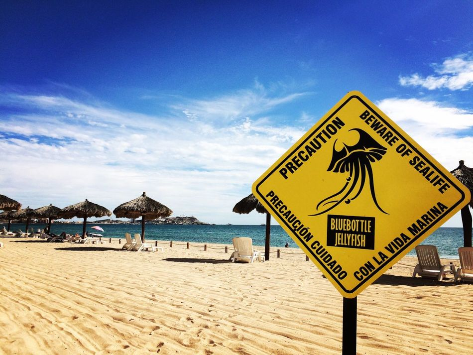 Sky Sand Sea Beach Water No People Horizon Over Water Day Nature Outdoors Beauty In Nature My Favorite Place Beach Fun Caution Bluebottle Jellyfish Watch Out! Precaution My Year My View