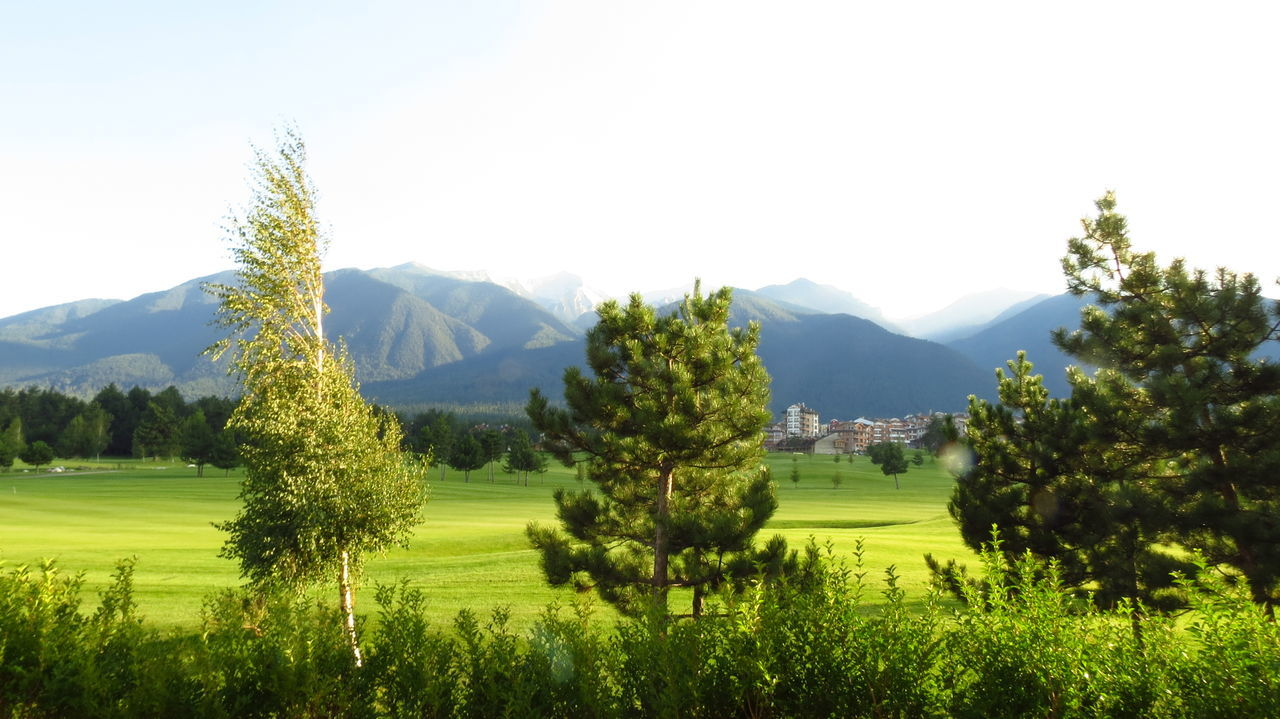 Beauty In Nature Day Golf Course Grass Green Color Growth Idyllic Landscape Lush - Description Mountain Mountain Range Nature No People Outdoors Scenics Sky Tree