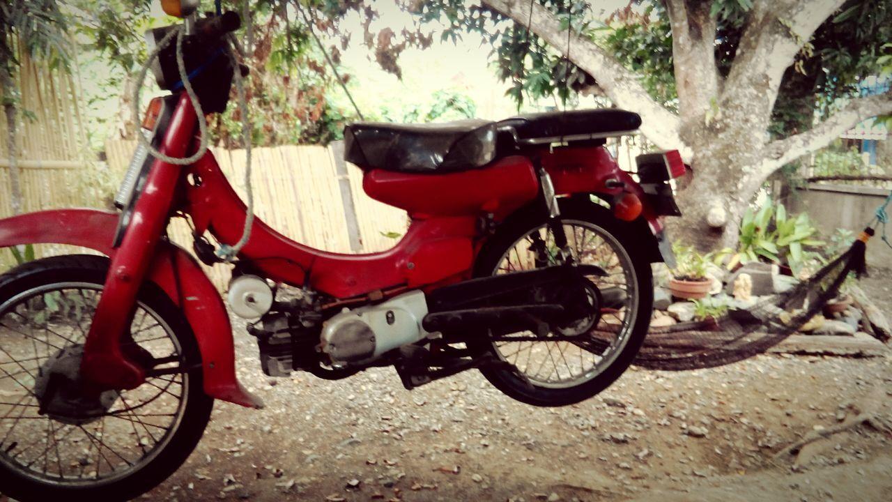 🚲 Hang The Bike Vintagebike Wannabephotographer the street photographer - 2016 eyeem awards