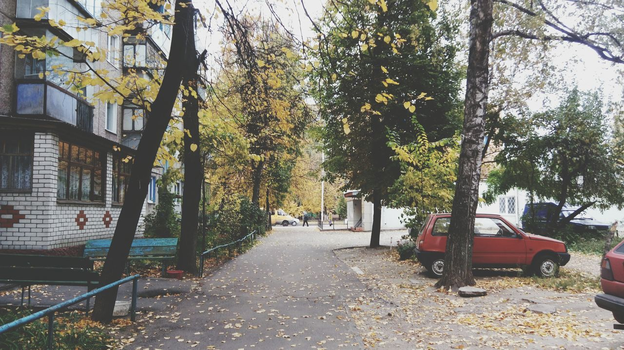 Cityscape Season  Season  Season  Season  Season  Season  Season  Non-urban Scene Scenics Branch Standing Autumn 12 Days Of Eyeem: These Are My Friends Russia Journey Mode Of Transport Vehicle Interior Built Structure Building Exterior In Front Of Horizon Over Land Young Adult Repetition Travel Destinations
