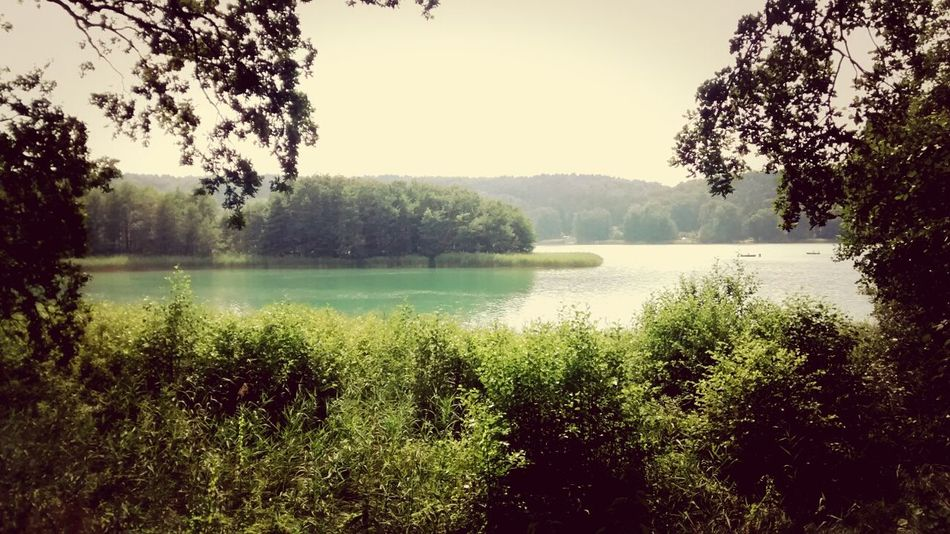 Lakeside Märkische Schweiz Schermützelsee Nature Brandenburg