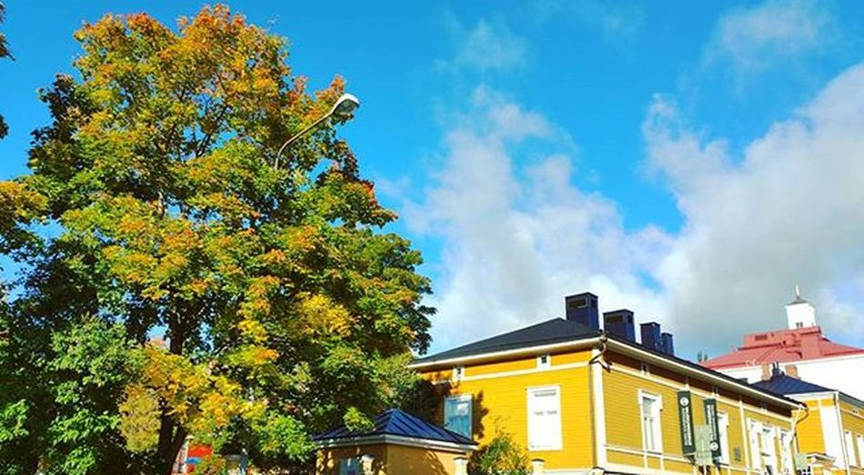 🎵Myrskyn jälkeen on poutasää....🎵 Myrsky Storm Myrskynjälkeen Afterstorm  Kuopio Finland Weekend AwesomeDay Autumn Syksy