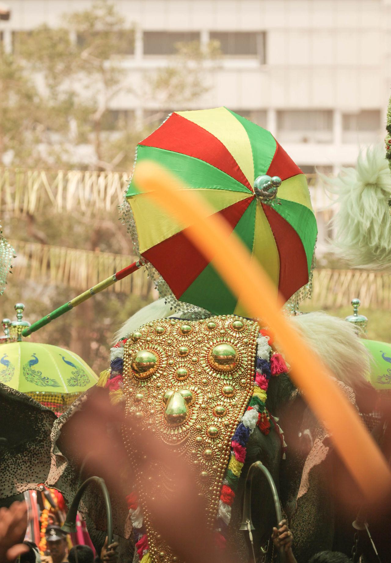Elephants Festival Kerala Festival Kudamattam Thrissurpooram Eyeemphotography EyeEm Gallery Kerala India
