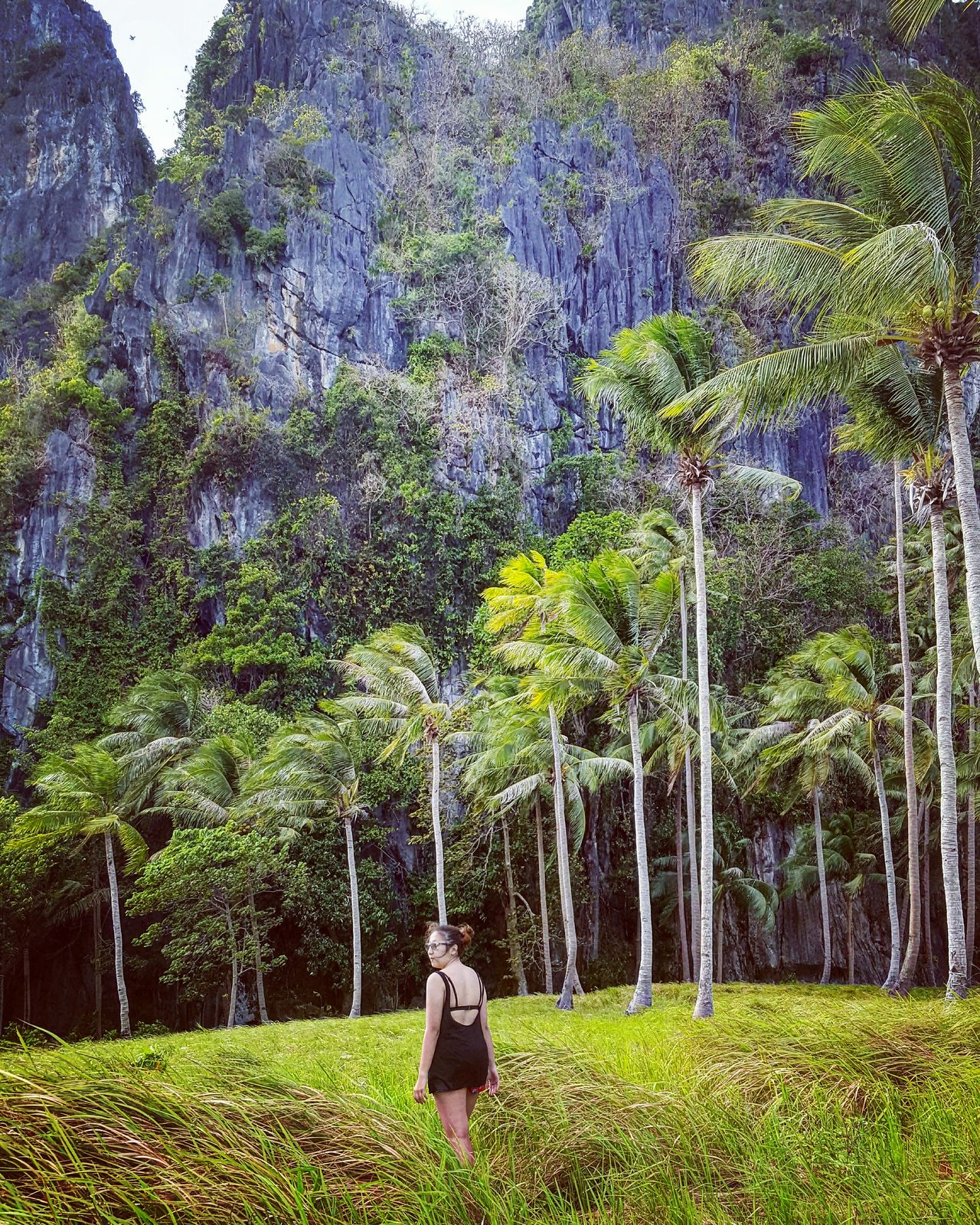 Nature Mountains Palm Trees Philippines Itsmorefuninthephilippines Green Color Palawan El Nido Grass Grassland Beauty In NatureGrowth Field Green Nature Tree Day Outdoors Travel Tranquility TravelPhilippines Travelph